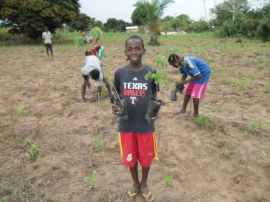 KWAME HOLDING RAINTREE SEEDLINGS