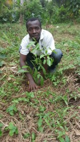 MR. APENTENG AND HIS PLANTED TREE