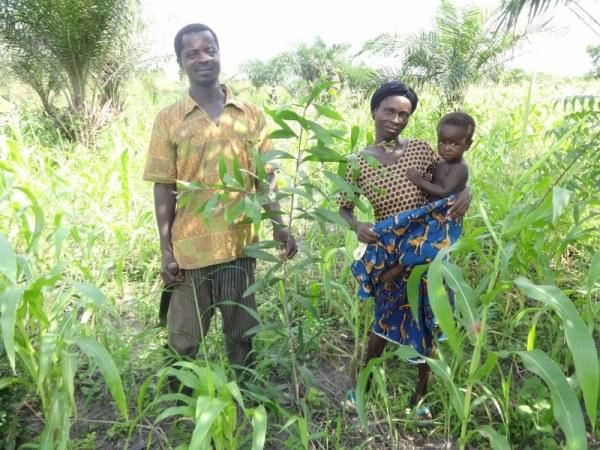 Vincent Klutse family with acacia mangium