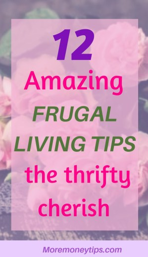 12 Amazing Frugal Living Tips the thrifty cherish