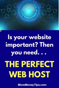 The Perfect Web Host