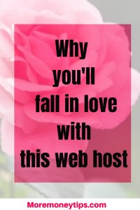 Why you'll fall in love with this web host.