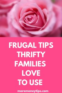 FRUGAL TIPS THRIFTY FAMILIES LOVE TO USE