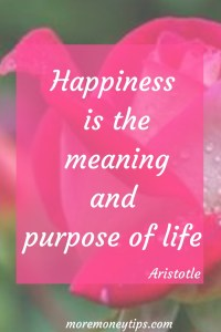 Happiness is the meaning and purpose of life.