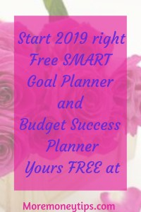 Start 2019 right.Free S.M.A.R.T. goal planner and budget success planner. Yours FREE.