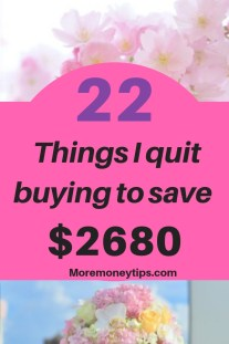 22 Things I quit buying to save $2680