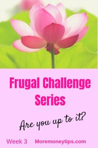 Frugal Challenge Series Week 3. Are you up to it?