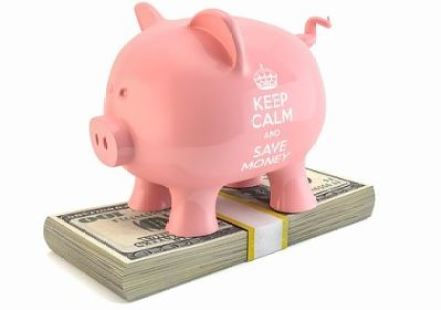 Pig standing on notes