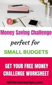Money Saving Challenge perfect for small budgets.