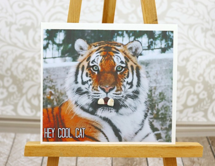 spread joy card tiger with human teeth