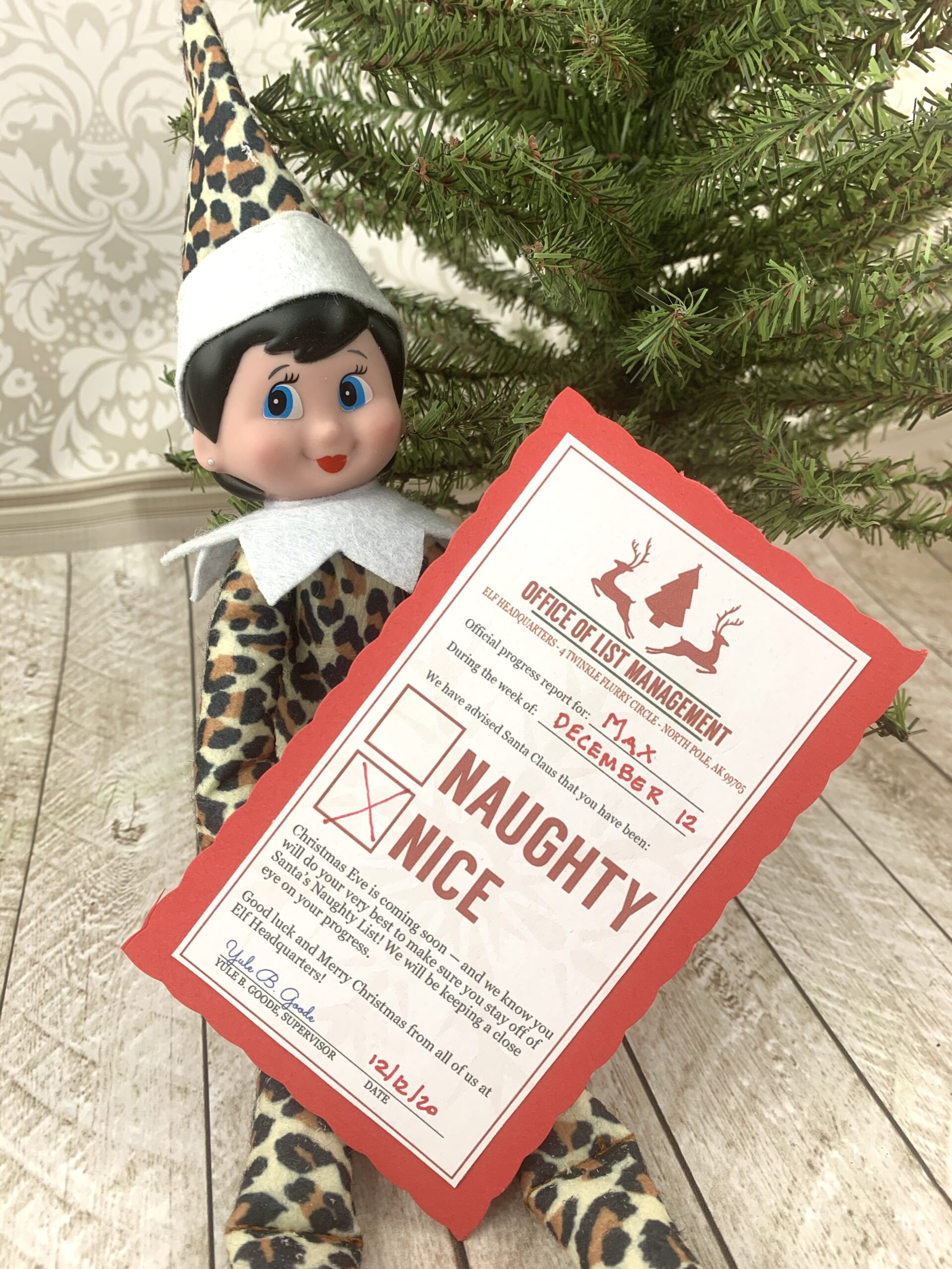 Elf on the Shelf Naughty or Nice Printable