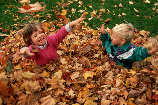 Children Playing in Leaves