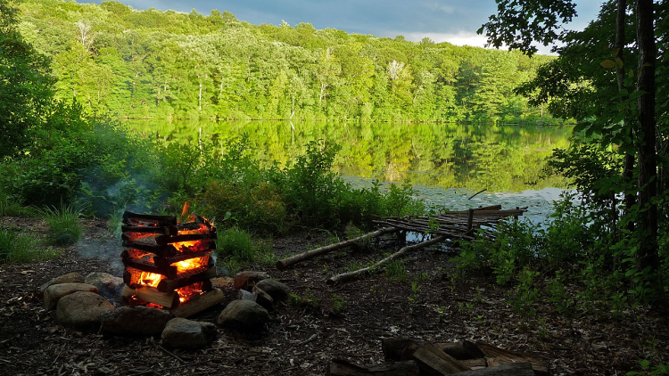 Outdoor Campfire At A Campsite In The Woods
