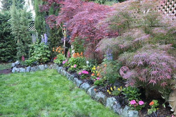 garden 011