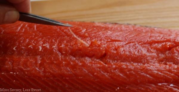 salmon 007.22