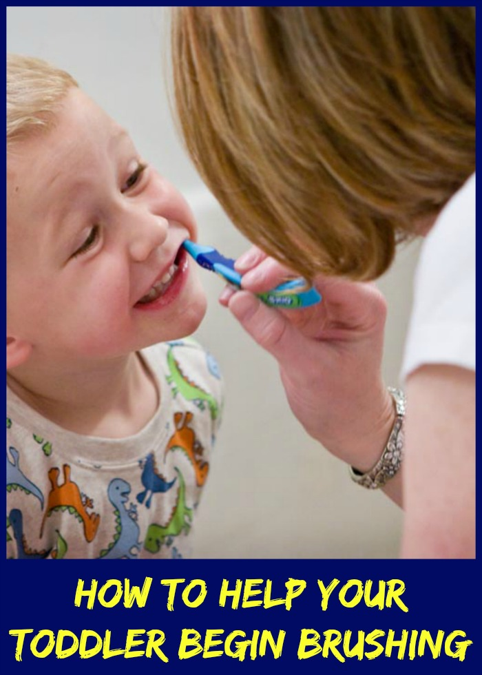 How To Help Your Toddler Begin Brushing