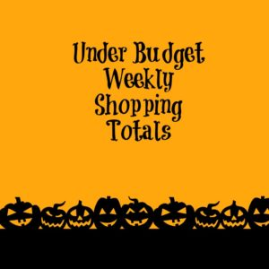 under budget weekly shopping totals