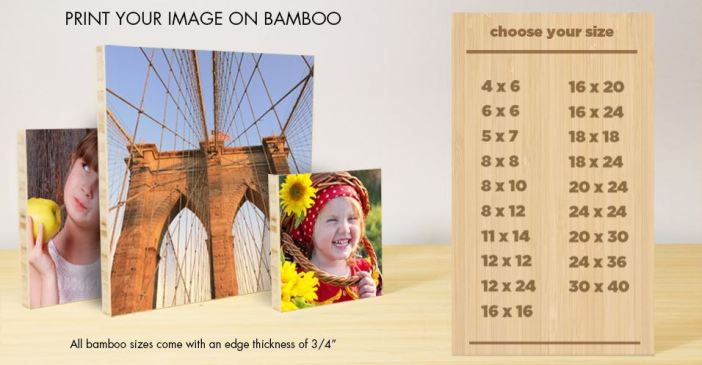 photography.com pictures on bamboo