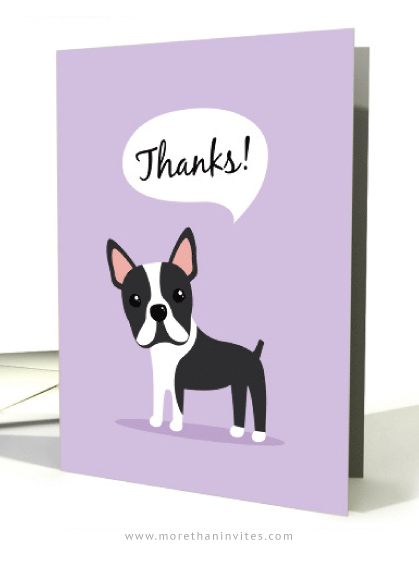 Boston Terrier Dog Thank You Cards More Than Invites