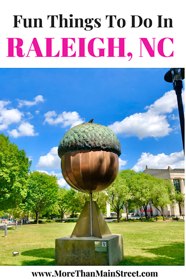 Top 10 Fun Things to Do in Raleigh with Kids tips featured by top North Carolina travel blog More than Main Street.