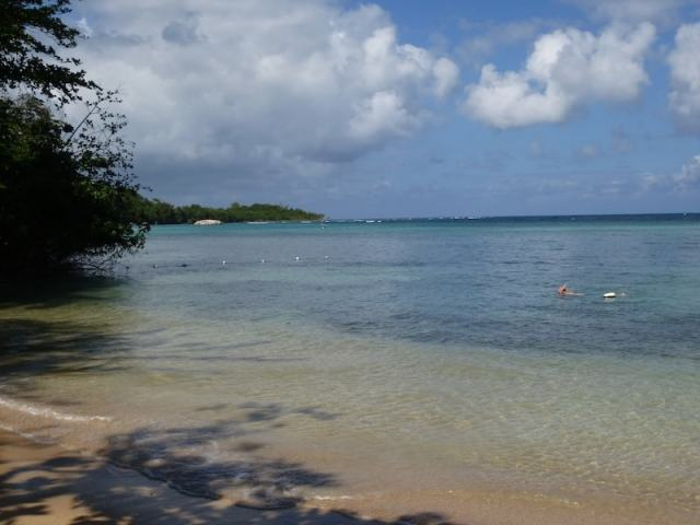 The beach at Rio Chico in Jamaica