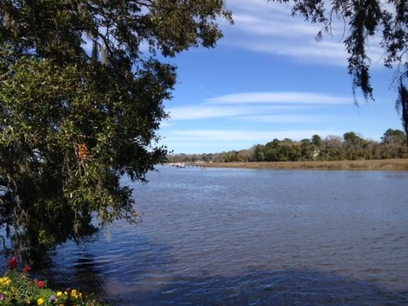 View from the bank of the Ashley River