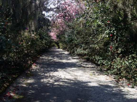 One of the meandering paths