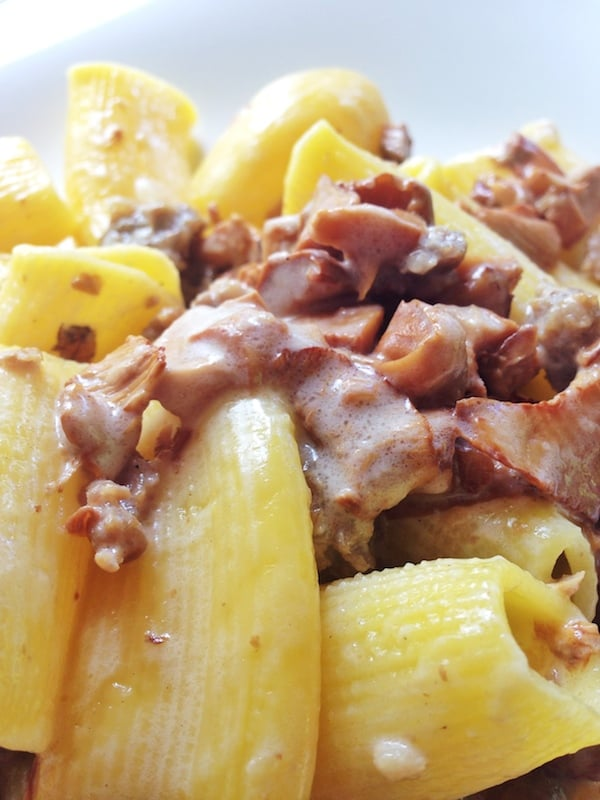 Rigatoni ai funghi (mushrooms) with parmigiano (Photo courtesy Flora Pinotti Sano)