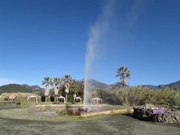 Napa Valley's Old Faithful (Credit: John and Sandra Nowlan)