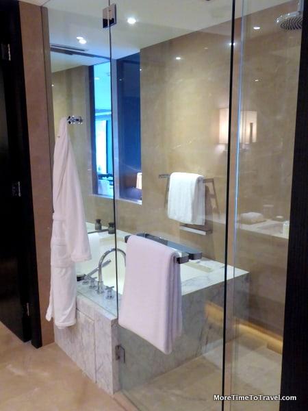 Glass-enclosed shower/tub