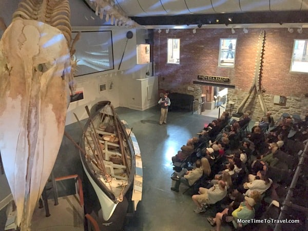 Visitors listen to a lecture in Gosnell Hall with the sperm whale skeleton overhead