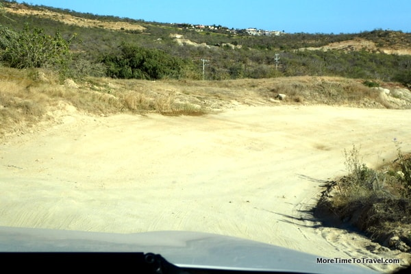 The bumpy road to Flora Farms