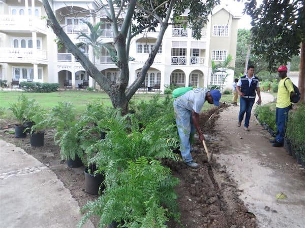 Landscapers at Melia Braco Village (Credit: John and Sandra Nowlan)