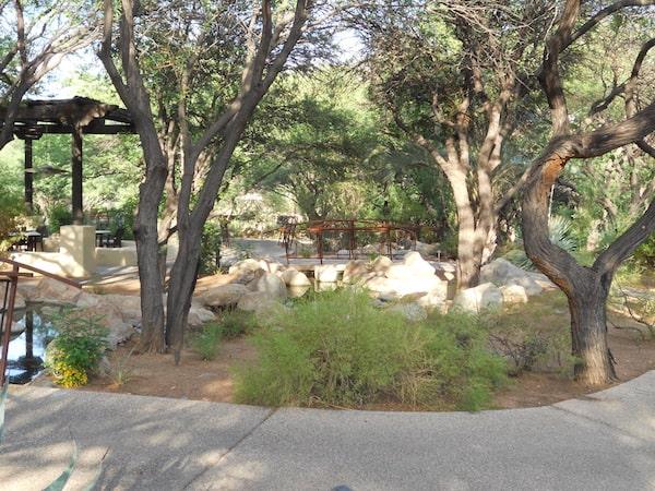 A tranquil spot at Miraval (Photo credit: Nancy Monson)