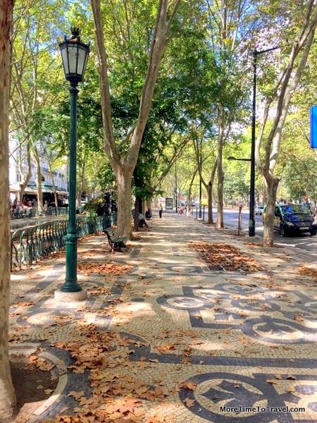 Beautiful tree-lined Avenida da Liberdade