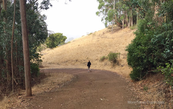 A golden morning walk on Cavallo Point's trails.