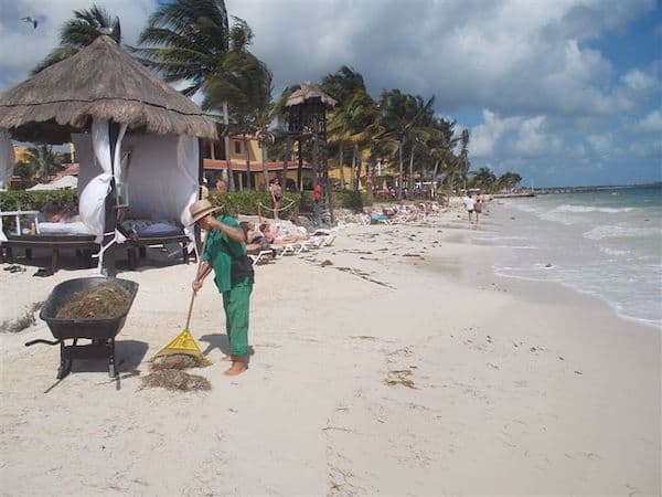 Keeping the beach pristine takes some effort