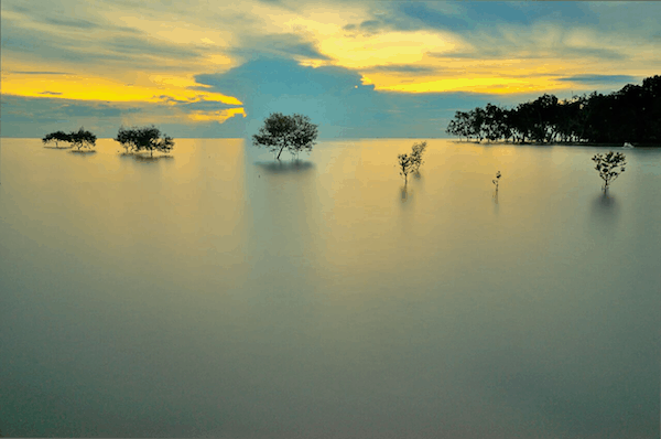 Mergui islands (Credit: Azri Suratmin for Shutterstock)
