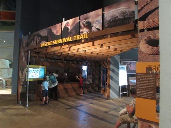 Inside Springs Preserve