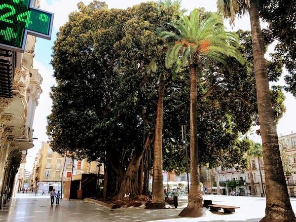 San Francisco Plaza in Cartagena, Spain