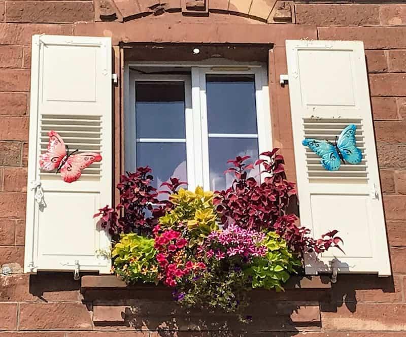 Window in La Petite-Pierre