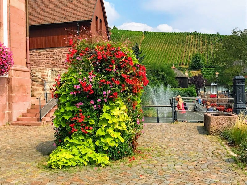 Best Day Trip from Stasbourg - Riquewihr - A town surrounded by vineyards