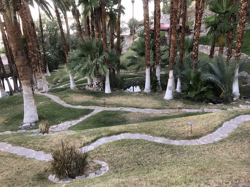Winding paths at the this oasis in Death Valley