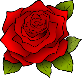 Roses for St. Jordi Day