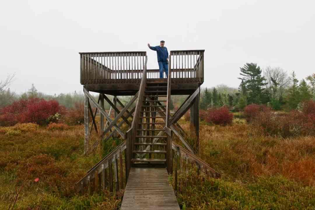 Star-viewing platform at Trout Point Lodge