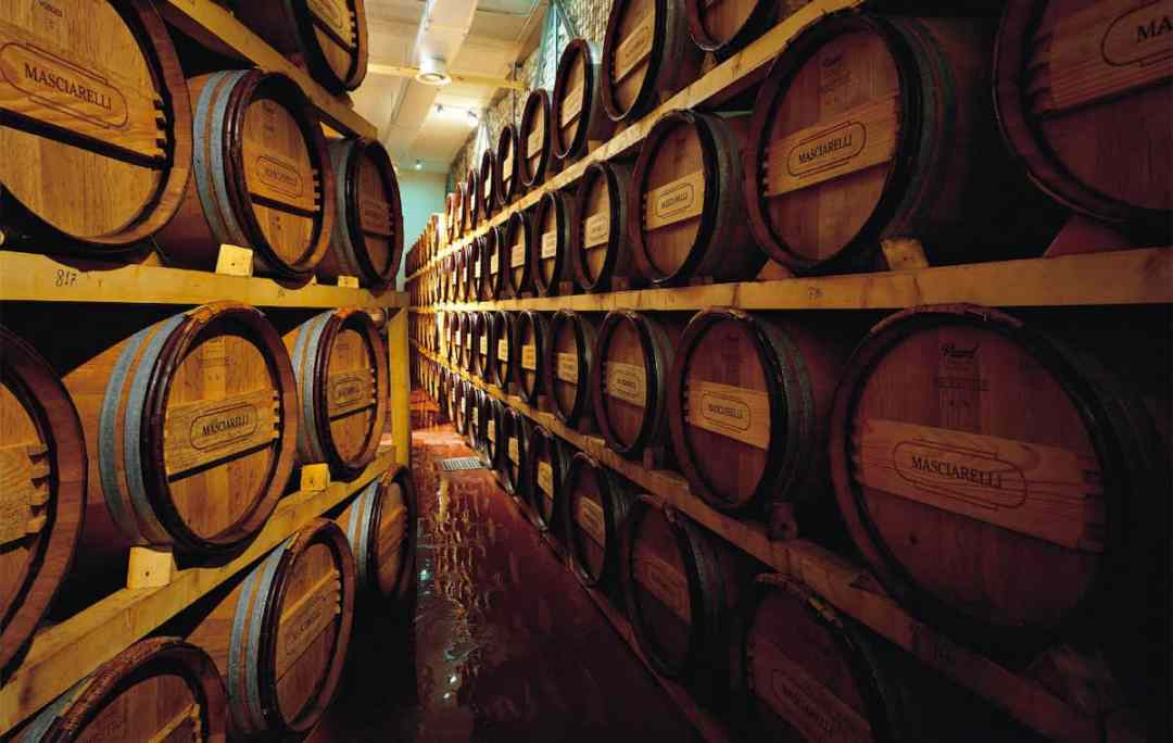 Wine cellar with old casks at the Masciarelli Winery