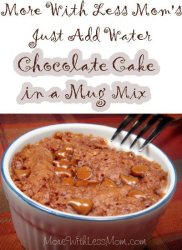 Just Add Water Chocolate Mug Cake Mix Recipe