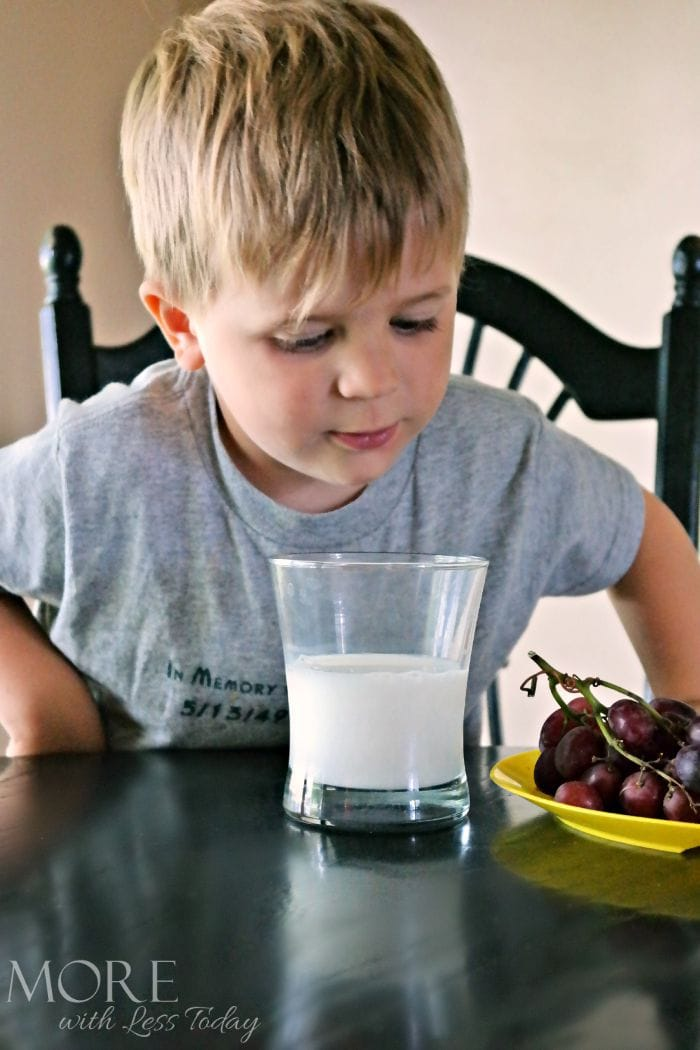 Four Things You Might Not Know about Milk