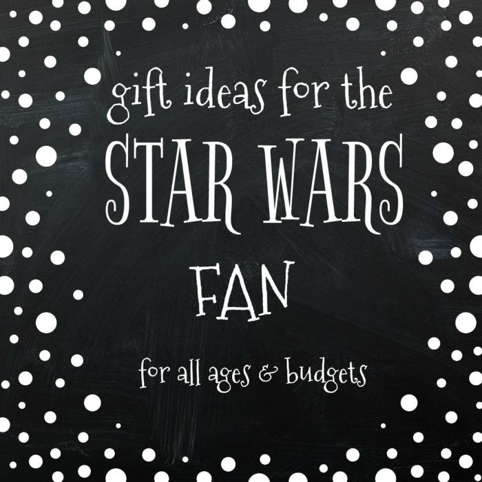 Do you have a Star Wars fan on your gift list? We found popular Star Wars gift ideas for all ages and budgets. Which one is your favorite?