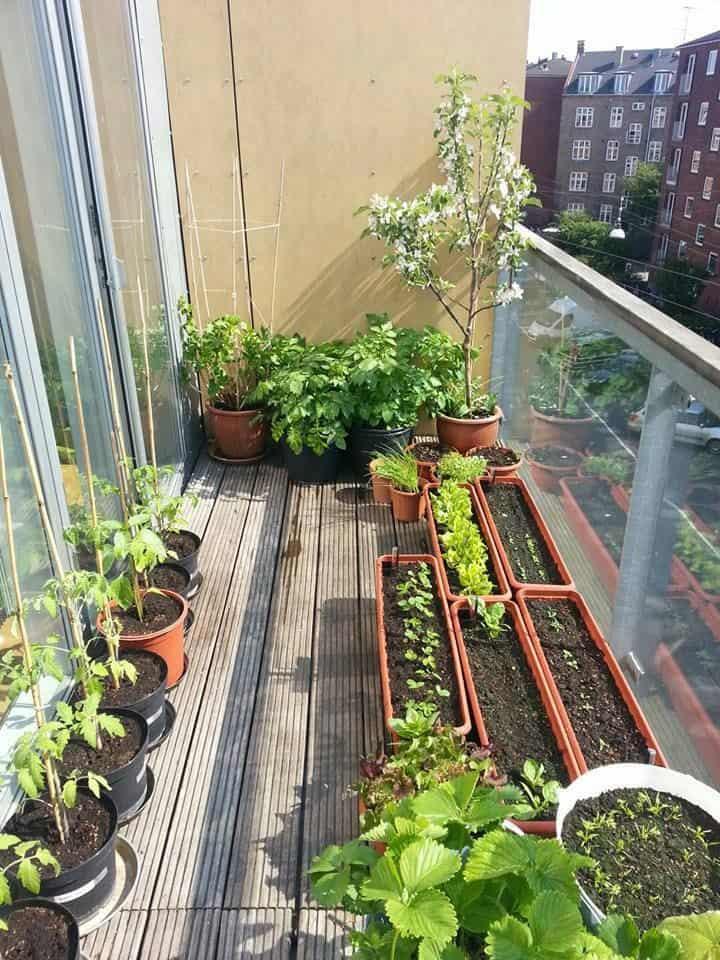 4 Small balcony garden design with remarkable design - MORFLORA